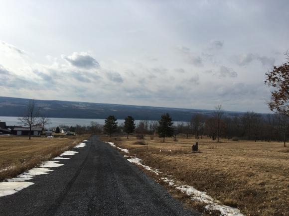 3759 Lake Ridge, Burdett, NY - USA (photo 4)