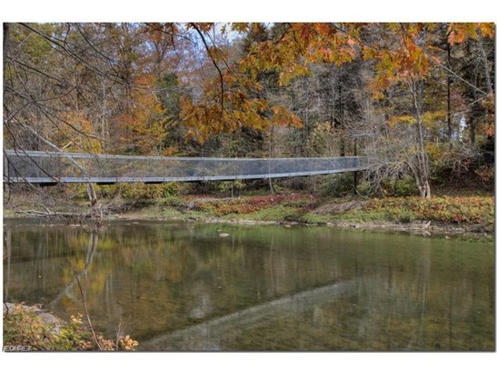 1985 Chagrin River Rd, Gates Mills, OH - USA (photo 4)