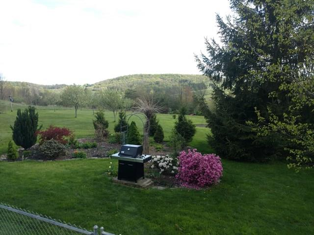171 Dartt Settlement Road, Wellsboro, PA - USA (photo 5)