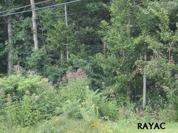 660q Green Springs Rd, Hanover, PA - USA (photo 1)
