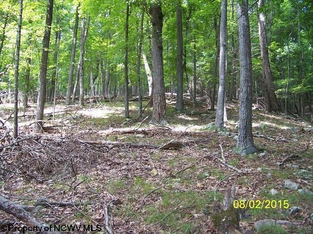 Lot 40 Waterline Drive, Upper Tract, WV - USA (photo 1)