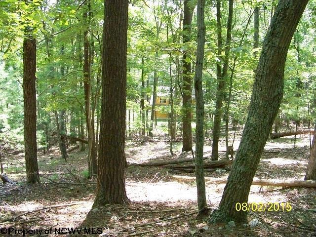 Lot 40 Waterline Drive, Upper Tract, WV - USA (photo 3)