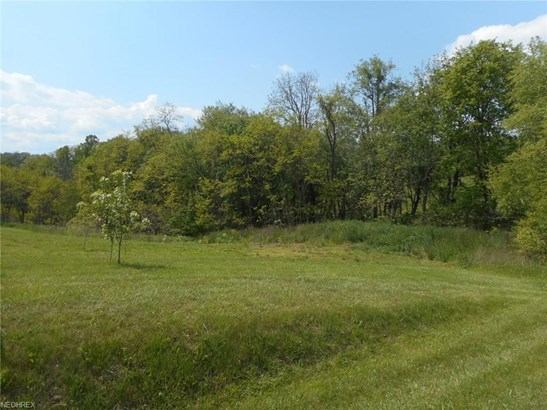 11796 Blue Ridge Rd, Newcomerstown, OH - USA (photo 4)
