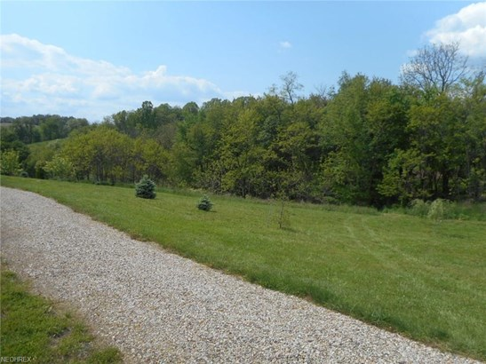 11796 Blue Ridge Rd, Newcomerstown, OH - USA (photo 5)
