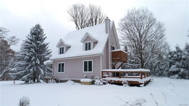 7278 Windsor Road, Ellicottville, NY - USA (photo 3)
