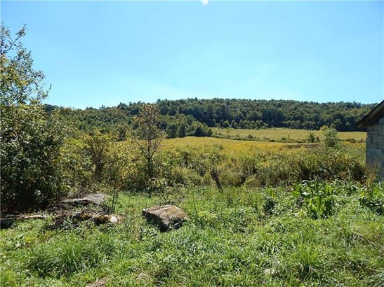 1652 Sandy Run Road, Confluence, PA - USA (photo 1)