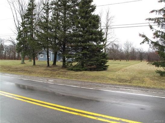 Vl Baer Road East, Pendleton, NY - USA (photo 5)