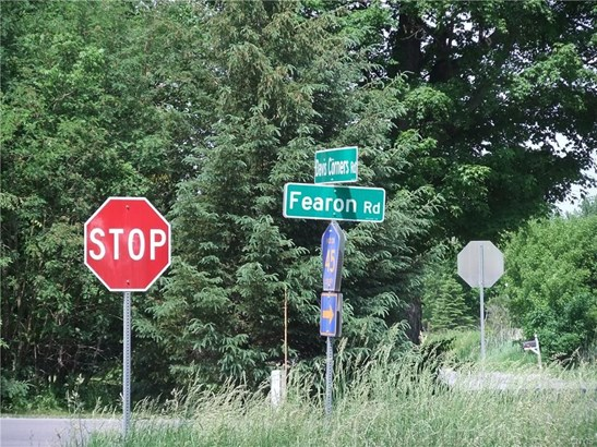 Lot 24 Fearon Road, Smithfield, NY - USA (photo 4)