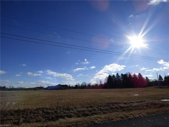 Jones Rd, Litchfield, OH - USA (photo 1)