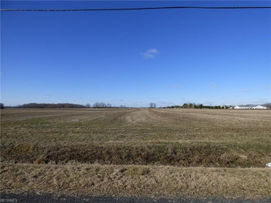 Jones Rd, Litchfield, OH - USA (photo 4)