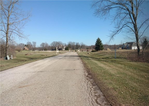 E Huntington Way, Mantua, OH - USA (photo 3)