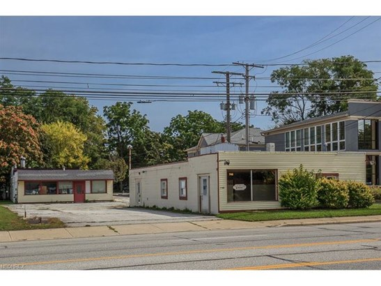 7461 Center St, Mentor, OH - USA (photo 1)
