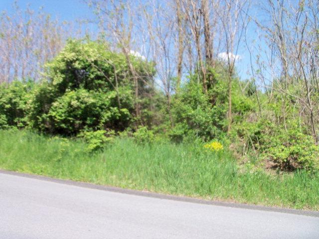 0 Nichols Street, Wellsboro, PA - USA (photo 1)