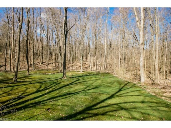 4820 Chagrin River Rd, Moreland Hills, OH - USA (photo 5)