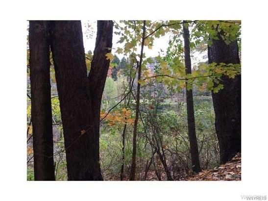 V/l Smokes Creek Road, Orchard Park, NY - USA (photo 2)