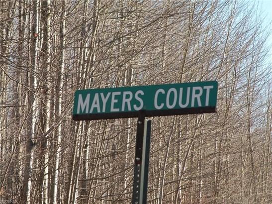 Mayers Ct, Geneva, OH - USA (photo 5)