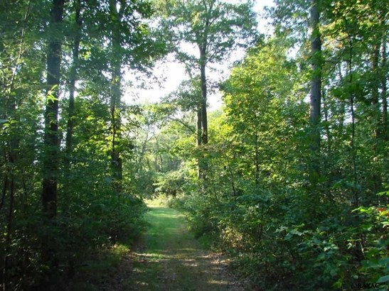 Lot 28a Muddy Creek Forks Road, Airville, PA - USA (photo 1)