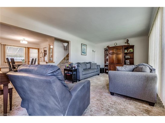 6590 Indiana Ave, Mayfield Heights, OH - USA (photo 4)