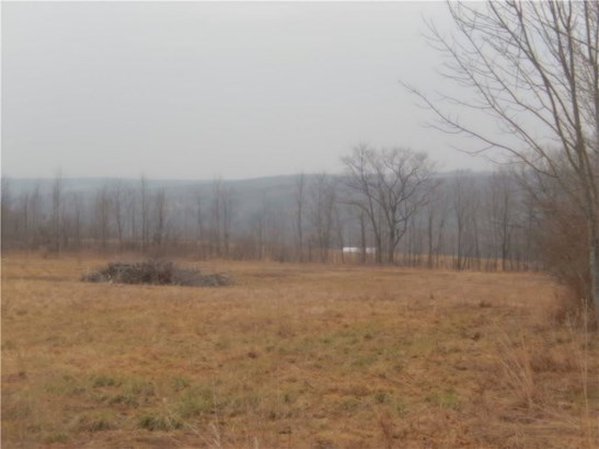11931 County Route 122, Prattsburgh, NY - USA (photo 2)