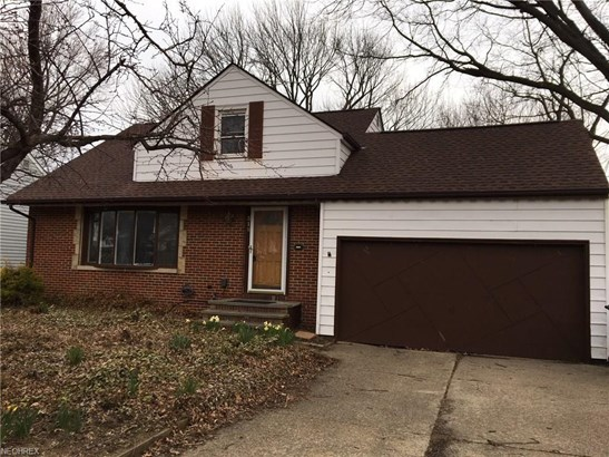 316 Walworth Ave, Euclid, OH - USA (photo 1)