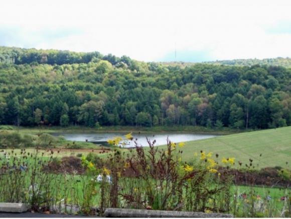 2108 Farm To Market Rd, Endwell, NY - USA (photo 2)