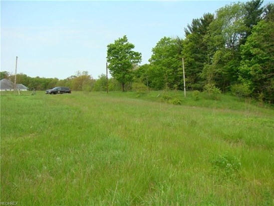 Lot 49 Mayfield Rd, Huntsburg, OH - USA (photo 3)