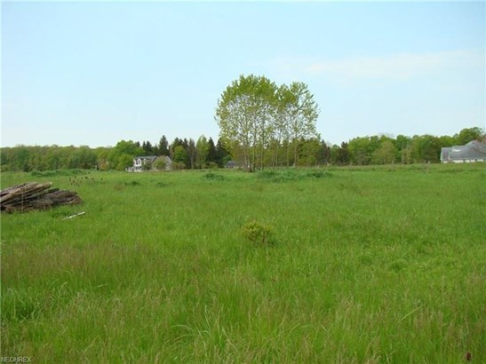 Lot 49 Mayfield Rd, Huntsburg, OH - USA (photo 4)