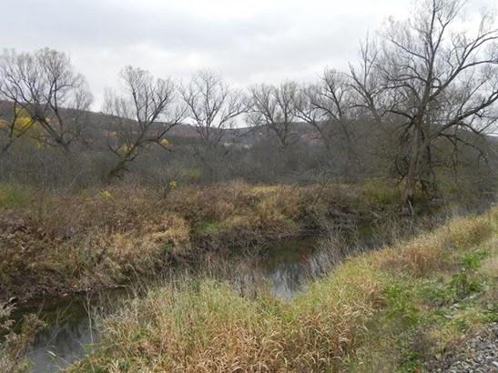 262 B State Rt. 414, Beaver Dams, NY - USA (photo 5)