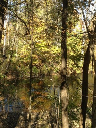 0 Chester Estates Drive Lot #125, Chesterville, OH - USA (photo 5)
