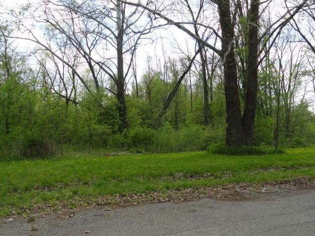 0 Chester Estates Drive Lot #131, Chesterville, OH - USA (photo 2)