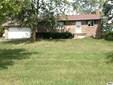 9710 Shepherd Rd, Onsted, MI - USA (photo 1)