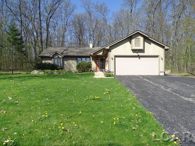 9274 Kingsley Dr, Onsted, MI - USA (photo 1)