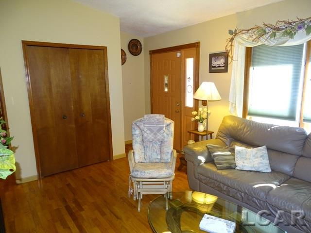 9274 Kingsley Dr, Onsted, MI - USA (photo 3)