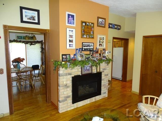 9274 Kingsley Dr, Onsted, MI - USA (photo 4)