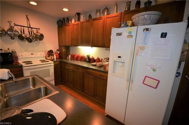 420 E Herrick Ave, Wellington, OH - USA (photo 5)