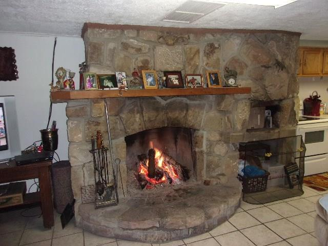720 Grange Hall Rd., Tionesta, PA - USA (photo 2)