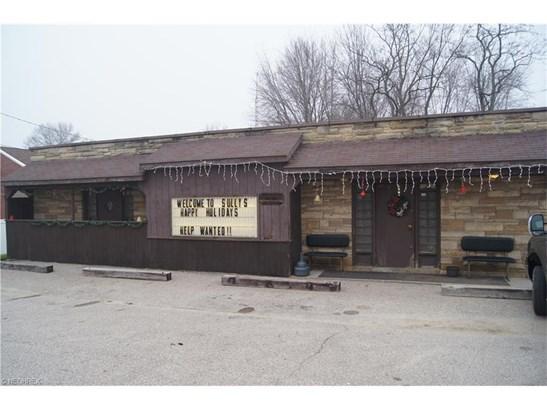 1293 Tallmadge Rd, Kent, OH - USA (photo 2)