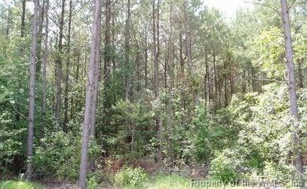 Lot 50 Plantation Place, Little Plymouth, VA - USA (photo 4)