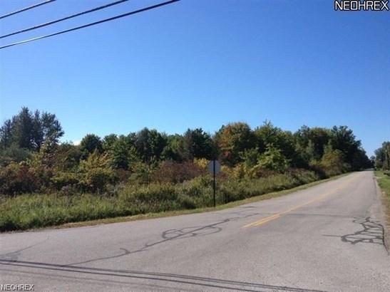 3729 Wheeler Creek Rd, Geneva, OH - USA (photo 2)