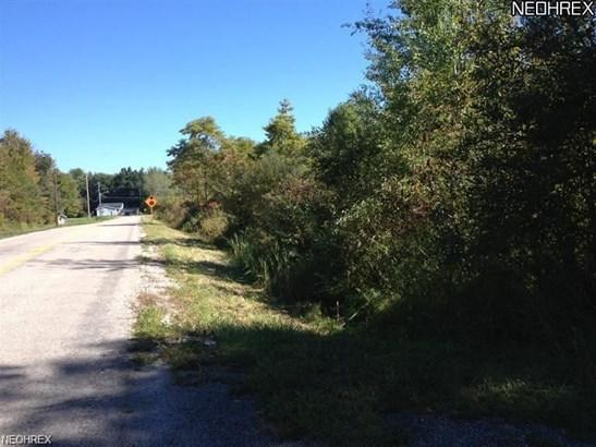 3729 Wheeler Creek Rd, Geneva, OH - USA (photo 4)