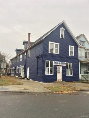 357 Vermont Street, Buffalo, NY - USA (photo 1)
