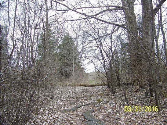 5876 East Lake Way  Lot 45, Romulus, NY - USA (photo 3)