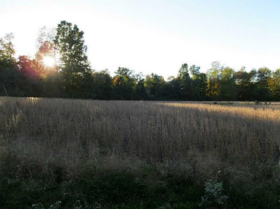 0 Sandy Lake     36 Acres, Lot #6 Road, Carlton, PA - USA (photo 2)