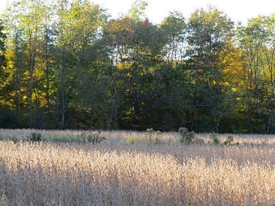 0 Sandy Lake     36 Acres, Lot #6 Road, Carlton, PA - USA (photo 3)