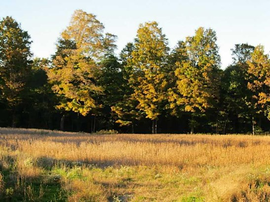 0 Sandy Lake     36 Acres, Lot #6 Road, Carlton, PA - USA (photo 4)