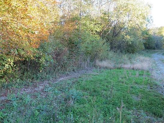 0 Sandy Lake     36 Acres, Lot #6 Road, Carlton, PA - USA (photo 5)