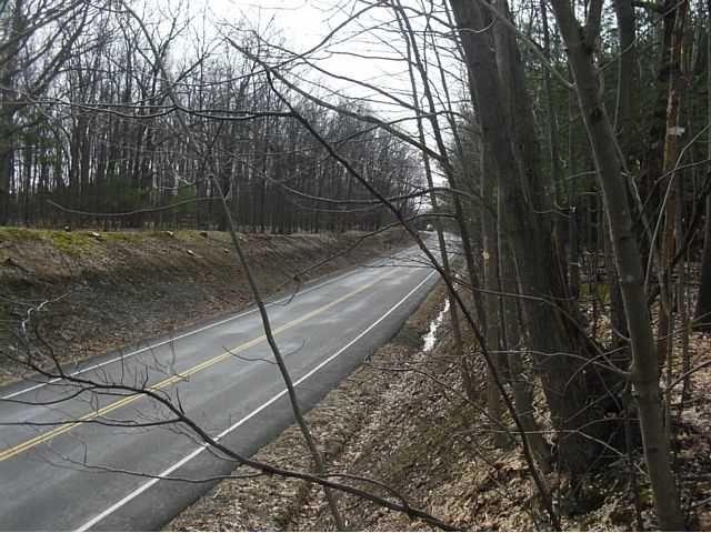 10111 State Route 230, Wayne, NY - USA (photo 4)