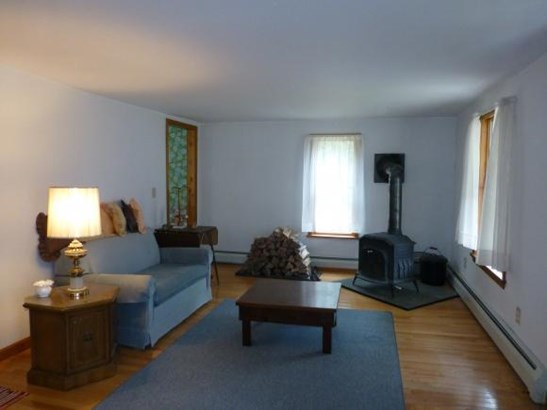 141 Briggs Allen Road, Candor, NY - USA (photo 3)