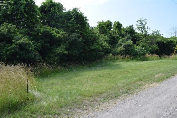 115 Fernwood Lane, Kelleys Island, OH - USA (photo 2)