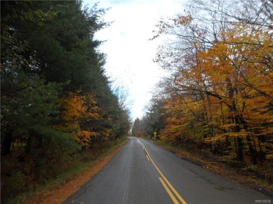 Vl Abbott Hill Road, Springville, NY - USA (photo 4)